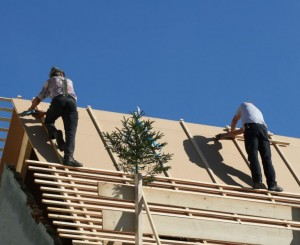 Apartment Roof Repair Cost
